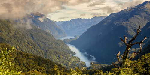 View from Wilmot Pass into Deep Cove, Doubtful Sound
